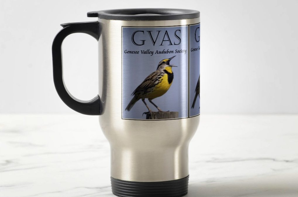 Purchase Genesee Valley Audubon Society Merchandise and Clothing!